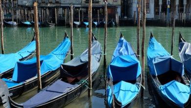 Photo of Transparente y llena de peces, así está el agua en los canales de Venecia ante la falta de turistas y la cuarentena