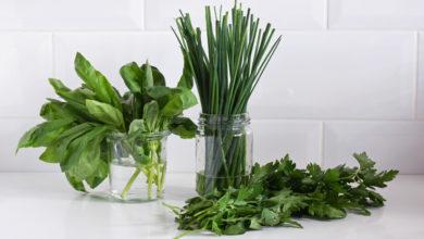 Photo of Ya sea perejil, cebollines o albahaca, este es el mejor método para conservar hierbas aromáticas ya cortadas