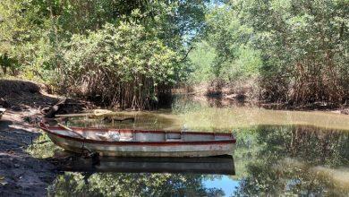 Photo of EE.UU. canjeará deuda con El Salvador para conservación de bosques y corales